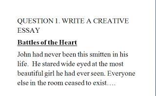 Death of osama bin laden essay
