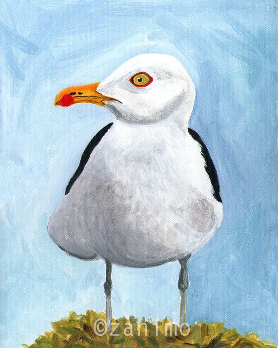 Pacific Gull Goéland du Pacifique by Zanimo on Etsy