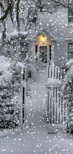 Winter home Mobile Screensavers available for free download.