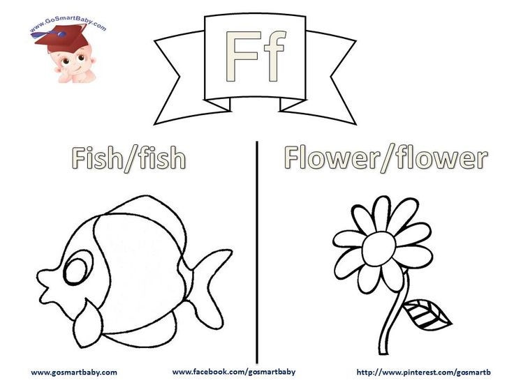 In this worksheet, letter F, a Fish and a Flower are two things your child can easily relate to in their daily life. Help them color each word in uppercase and in lowercase, then enjoy coloring the object itself with the color of their choice.