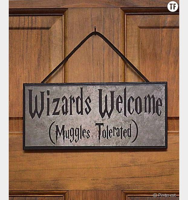 Accueillez vos invités avec une pancarte à thème Harry Potter, sourire garanti.