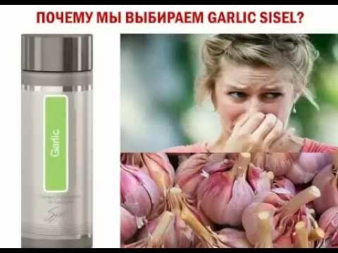 Garlic Чеснок от SISEL