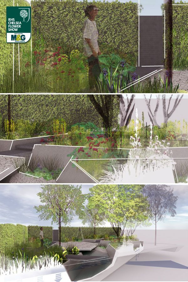 RHS Chelsea Flower Show - Show Garden - RBC Waterscape Garden Sponsored by Royal Bank of Canada. Designed by Hugo Bugg. Built by Himalayan Landscaping and Landscape Associates.