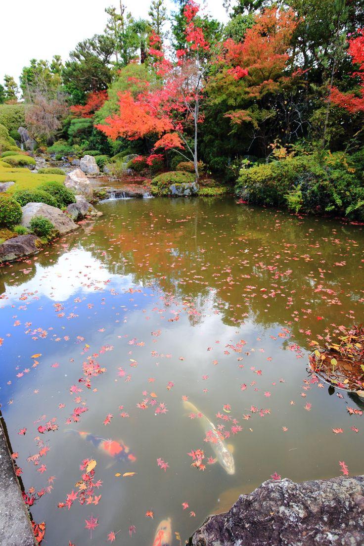 Ancient japanese gardens -  Japanese Gardenskyoto