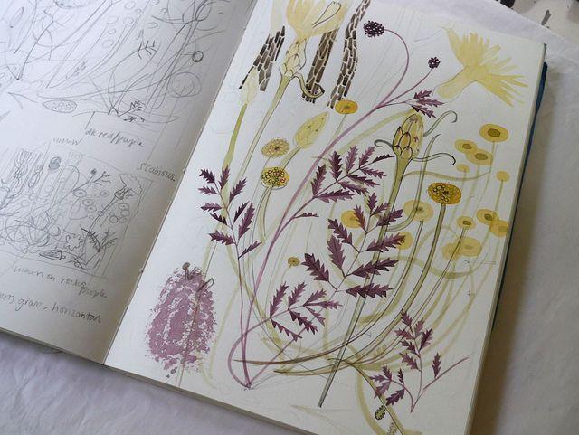 Angie Lewin - sketchbook