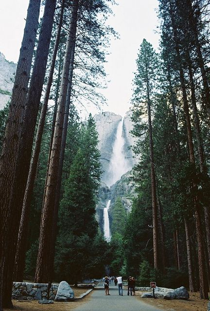 Yosemite Falls is the highest measured waterfall in North America and located in Yosemite National Park in the Sierra Nevada of California.
