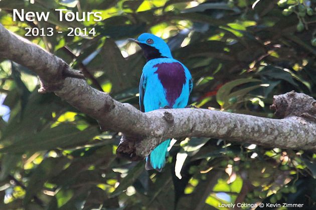 Pete loves Victor Emanuel Nature Tours (VENT) and has travel with them often.  Great birding trips!