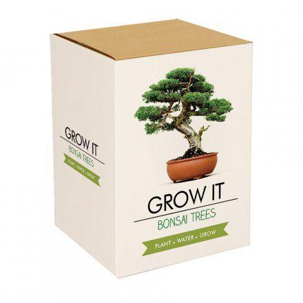 Pflanz-Set Bonsai Bäume online kaufen ➜ Bestellen Sie Pflanz-Set Bonsai Bäume für nur 12,95€ im design3000.de Online Shop - versandkostenfreie Lieferung ab €!