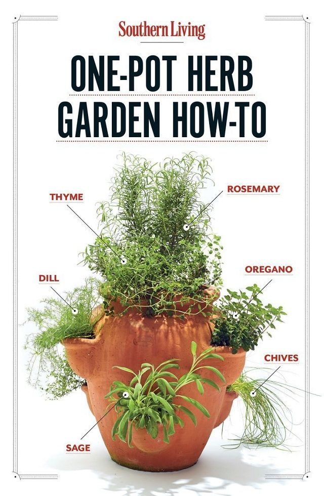 17 best ideas about herb garden design on pinterest backyard garden design flower garden design and kitchen garden ideas