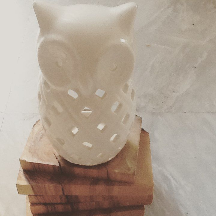 Just another wise owl  #owl #wood #marble #white #instadecor #myhome