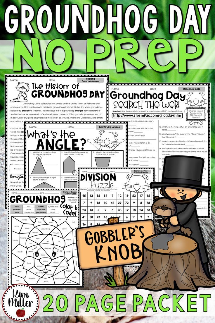 Groundhog Day Activities No Prep Math And Reading Packet My Students Love These Groundhog Day Activities Math Review Activities Upper Elementary Activities [ 1104 x 736 Pixel ]