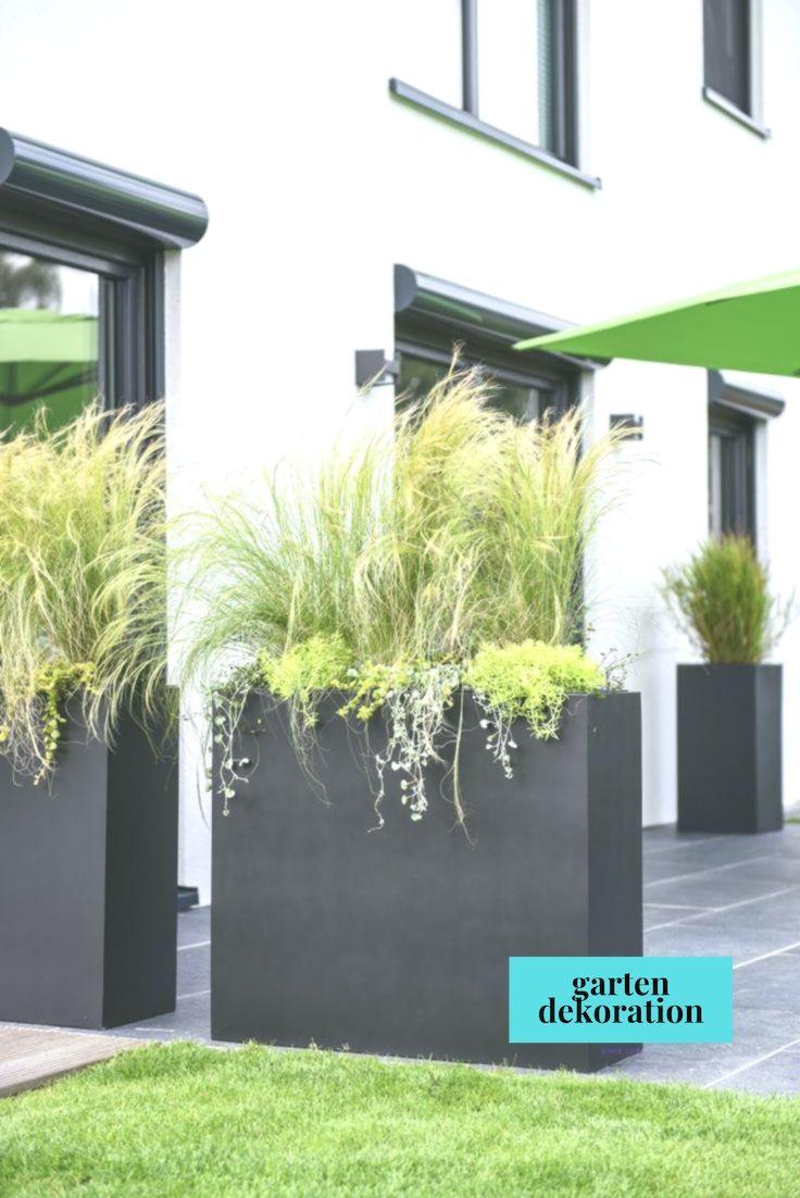 Pflanzkubel Als Sichtschutz Auf Terrasse Bepflanzung