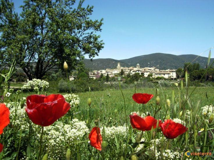 Vue générale de Lourmarin : Village où repose Albert Camus et où le château est un sujet de légendes.