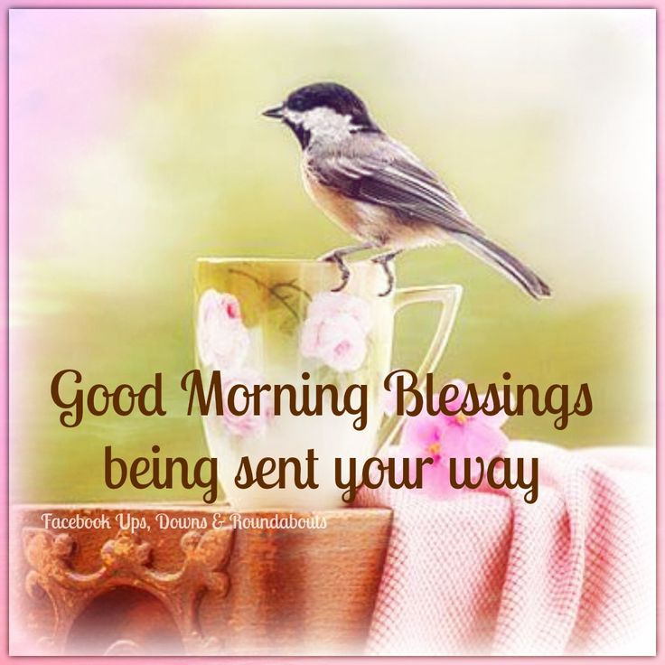 Blissful Good Morning Quotes: 286 Best Images About New Day, Month Or Season QUOTES On