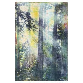 Infused with the tranquil charm of a summer's morning in the forest, this gorgeous canvas art print fits effortlessly into any scheme. Pair with bare woods, neutral fabrics and a sunny palette for a sense of country style.   Product: Wall artConstruction Material: CanvasFeatures: Ready to hangCleaning and Care: Wipe with damp cloth