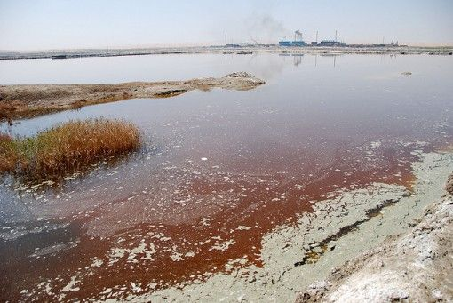 Water Pollution Facts: Water pollution occurs when pollutants are directly or indirectly released into water bodies without adequate treatment causing extreme threat to human and aquatic animals.