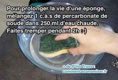 L'astuce est de tremper l'éponge dans un bain de percarbonate de soude pendant 2 h. Regardez :-)   Découvrez l'astuce ici : http://www.comment-economiser.fr/astuce-pour-redonner-vie-a-votre-eponge-instantanement.html?utm_content=bufferae71d&utm_medium=social&utm_source=pinterest.com&utm_campaign=buffer