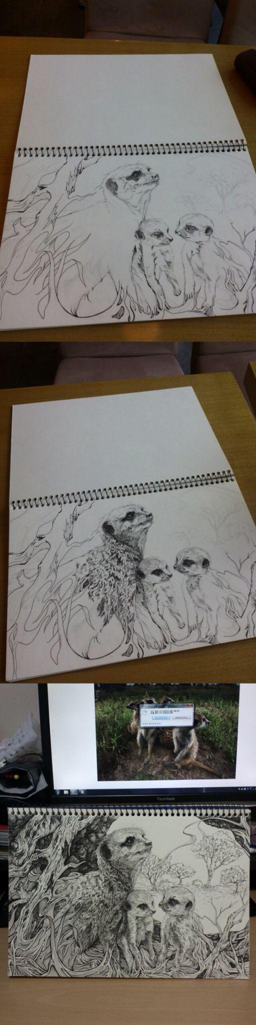 2012 SOKI 공모전 출품작04-meerkat 미어캣