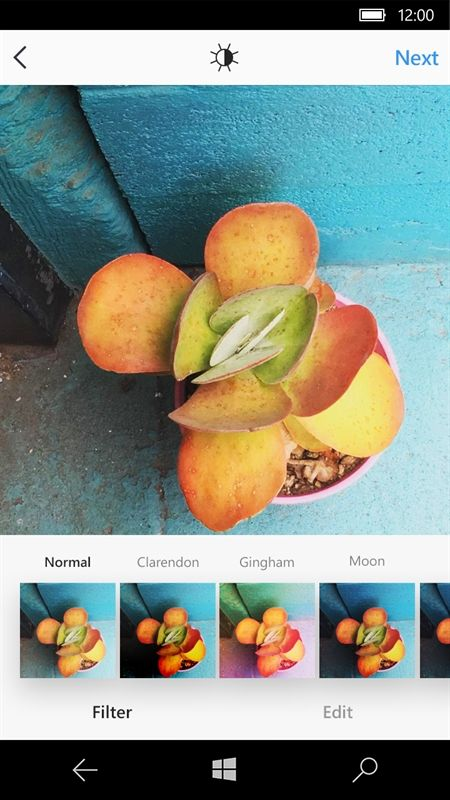 Windows 10 Instagram users can now view multiple-image posts https://www.onmsft.com/news/windows-10-instagram-users-can-now-view-multiple-image-posts