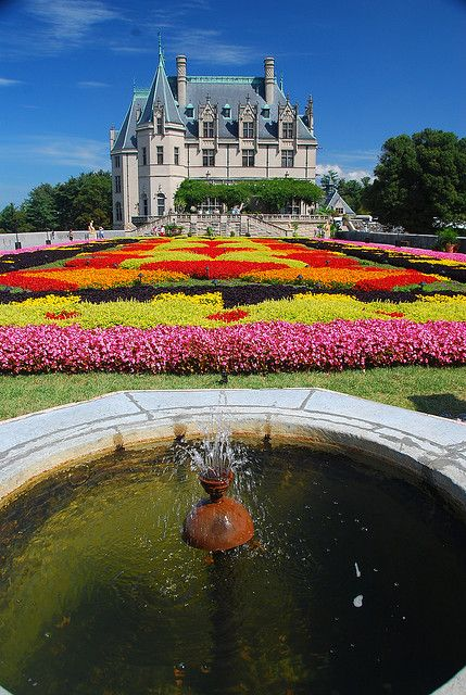 Floral carpet at the Biltmore Estate in Asheville, North Carolina, USA (by Mike the B).// I know I have a couple of the mansion but it is truely beautiful there and I believe they have 60 different varieties of azelas there!