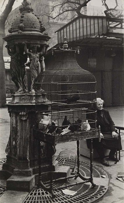 Paris Bird Market, 1950s ~ by Rosalie Gwathmey