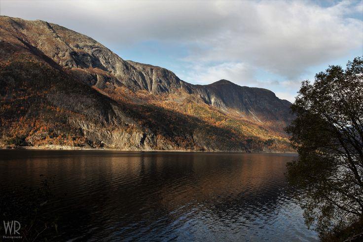 Sognefjorden i november