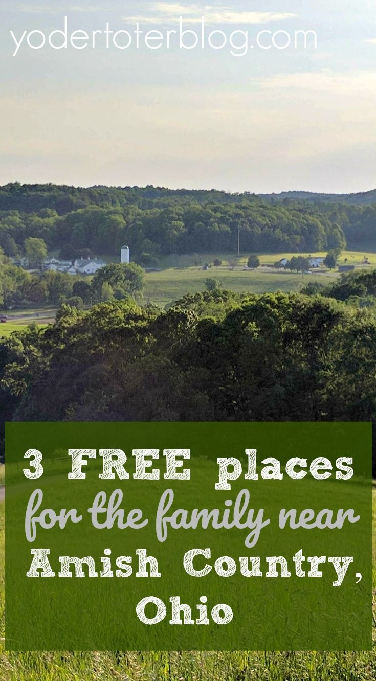 Visiting Holmes County but worried that your kids will get burnt out on crafts and Amish decor?  Here's my list of 3 FREE things to do within one hour Amish Country, Ohio with your kids (or without them).  Pack a picnic of swiss cheese and enjoy!