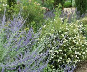 F. Marre - Rustica - Jardin de Drulon