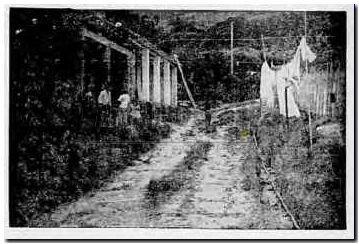 Hace 50 años, la Loma de Los Parra en el sector de El Poblado, #Medellín en 1965.