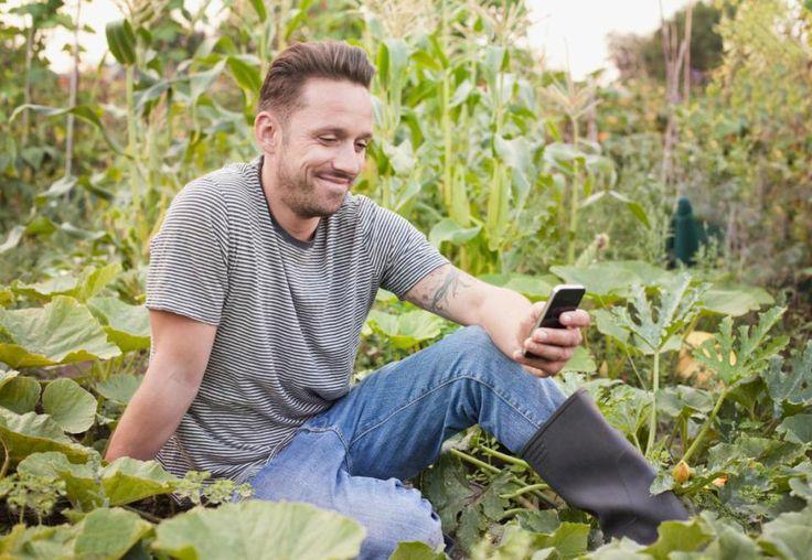 Plantit! Um aplicativo que ajudar a plantar orgânicos em casa