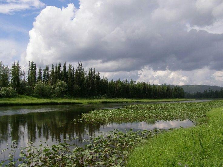 Центральносибирский государственный природный заповедник