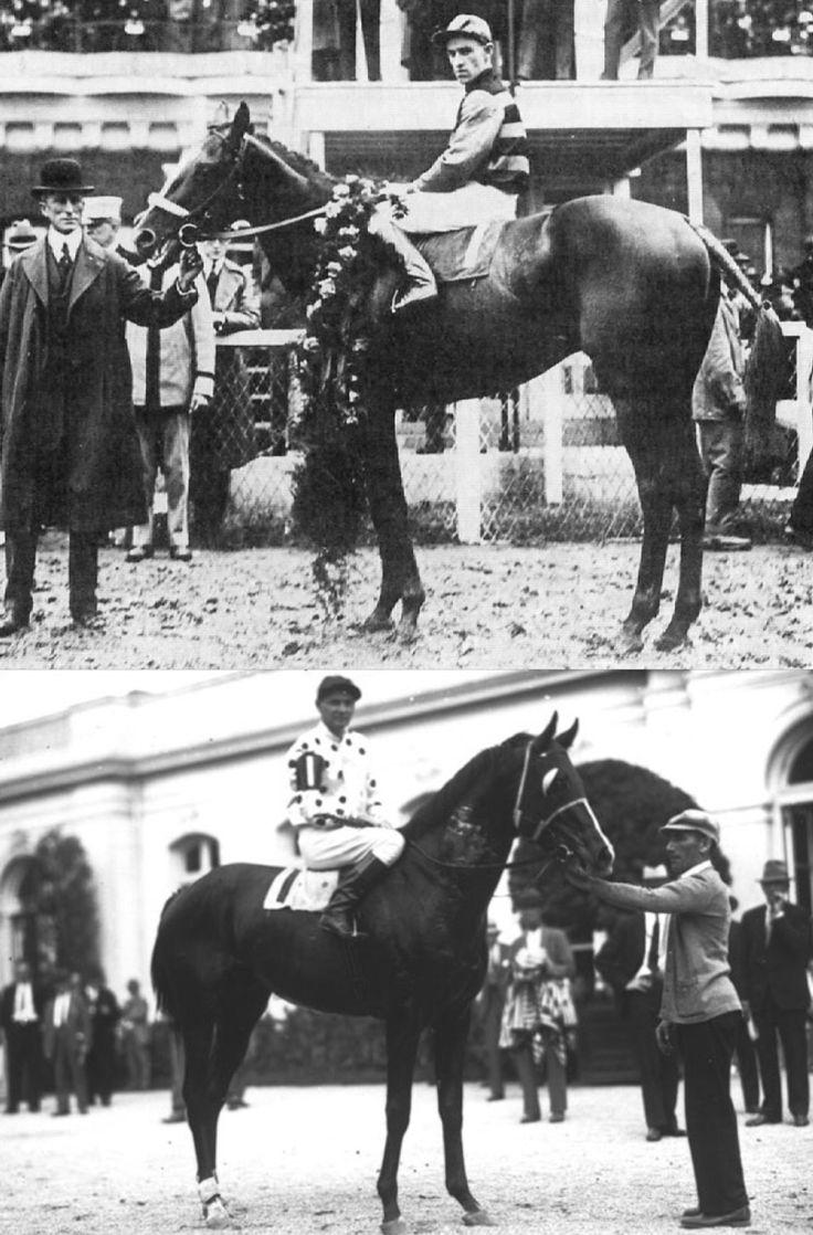 128 best Triple Crown Winners images on Pinterest | Race horses ...
