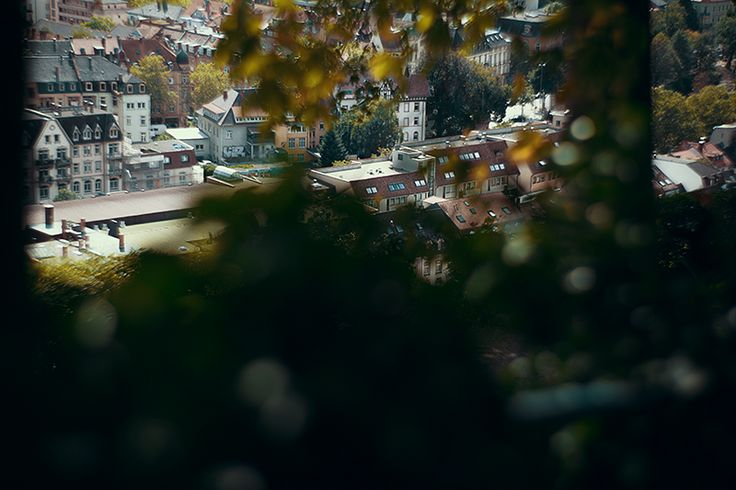 Freiburg im Breisgau von oben