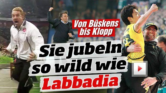 http://www.bild.de/sport/fussball/trainer/so-schoen-jubeln-die-bundesliga-trainer-40888176.bild.html