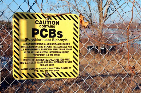 pcb toxic - Google Search