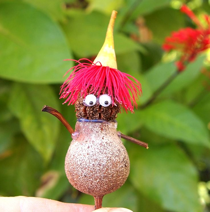 #Gumnut person made with gum blossom, gumnut and sheoak pod