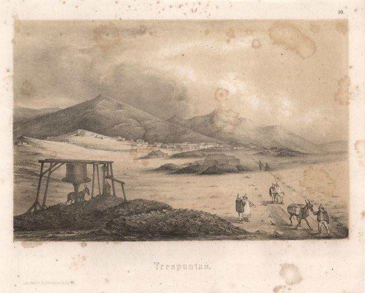 """""""Traspuntas"""". Viaggio nel Deserto di Atacama (Cile) del 1853-54. #viaggi #cile #atacama #esplorazioni #illustrazioni"""