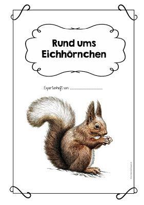 """Ideenreise: Expertenheft """"Rund ums Eichhörnchen"""""""