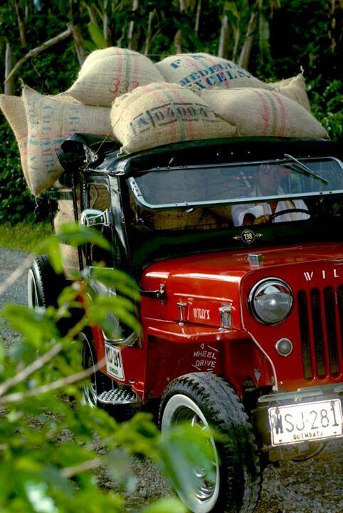 ¡¡¡¡WILLIS CARGANDO EL FRUTO DE NUESTRA TIERRA COLOMBIANA EL CAFÉ MAS SUAVE DE MUNDO!!!! #willis #café #coffee #Colombia