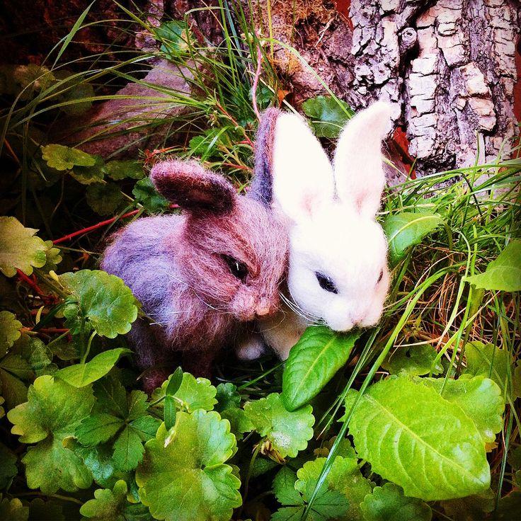 Needle felted animal, bunny, cute miniature, wool #needlefelted #miniatureanimalfigurines #toytoys #handmade #natural #fiberast #cute #realisticanimal #homedecor #birthdaygift #giftideas #merinowool #animalsculpture #miniaturegift #naturalwool #handmadeanimal #feltdoll #happyanimals #blackfridayetsy #naturalwooltoys #collectable #christmas #ecofrendly #waldorf #creative #ecotoys #feltcrafts #imaginative #childrenkids #giftforanimallovers  #giftforcraftlovers #woolanimal #funny