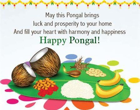 (Latest 2018) Happy Thai Pongal Wishes, Images, HD Wallpapers, for Whatapp & FB! | Padhonews
