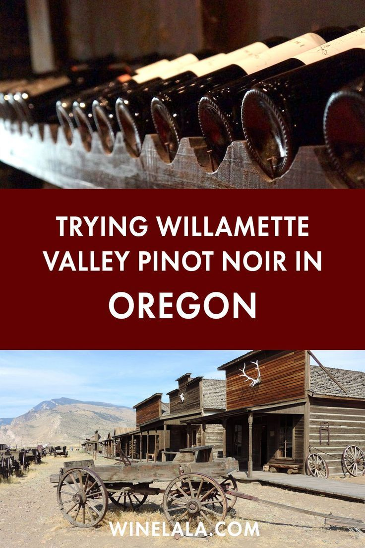 Well Hello Willamette Valley Pinot Noir Winelala A New Guide To Wine Oregon Wineries Pinot Noir Oregon Wine