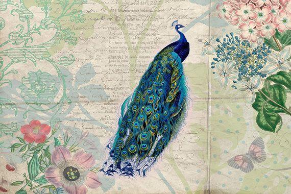 Peacock Print, botanische illustratie, botanische Print, Vintage kunst, Vintage Collage, liefde gedichten, vlinders, kunst aan de muur, Peacock Art Print