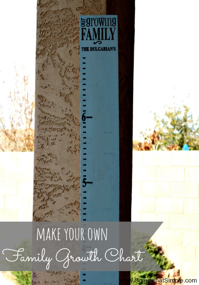 Make your own Family Growth Chart with a wood plank and some vinyl letters from www.SomewhatSimple.com