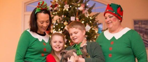 Elves Deliver Shelter Puppies To The Luckiest Kids In The World