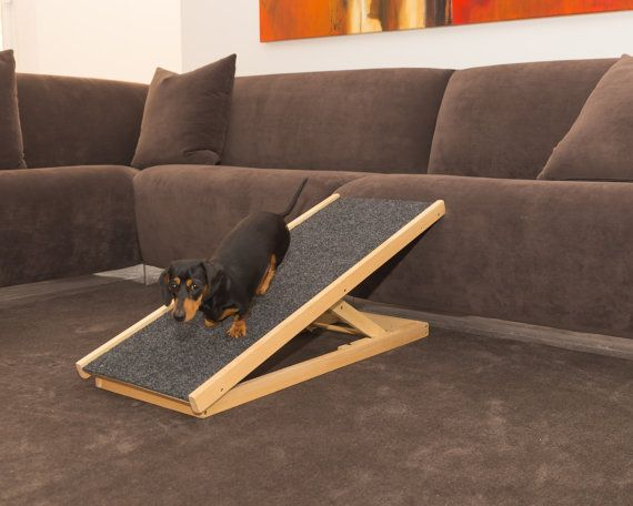 Dog Ramp Plans: Portable Dog Ramp With Adjustable
