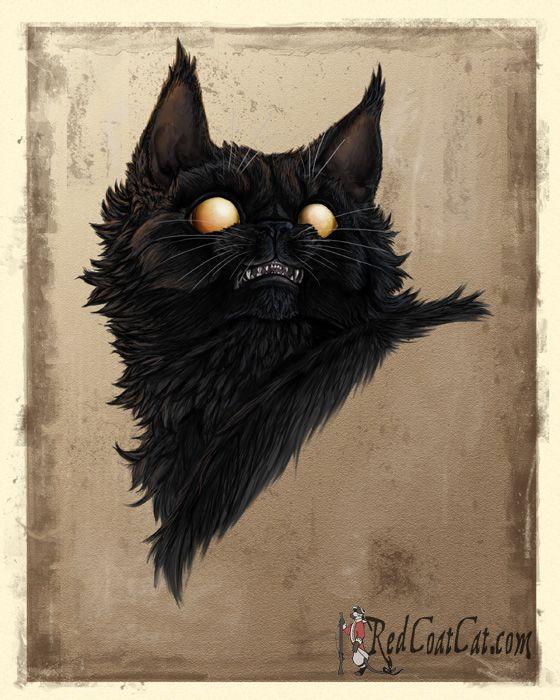 cat man death