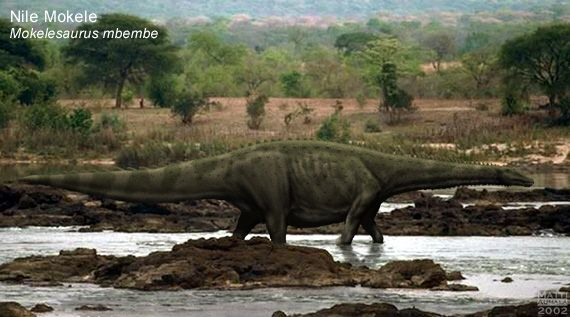Descriptions certainly fit those of dinosaurs. Spec Dinosauria Titanosauria Speculative Evolution Wiki Fandom Powered By Wikia Large Animals Mystery Africa
