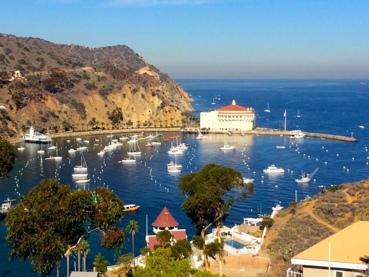Catalina Island The Perfect Birthday Getaway In Southern California With A Free Trip Santa Islandcatalina Hotelsavalon