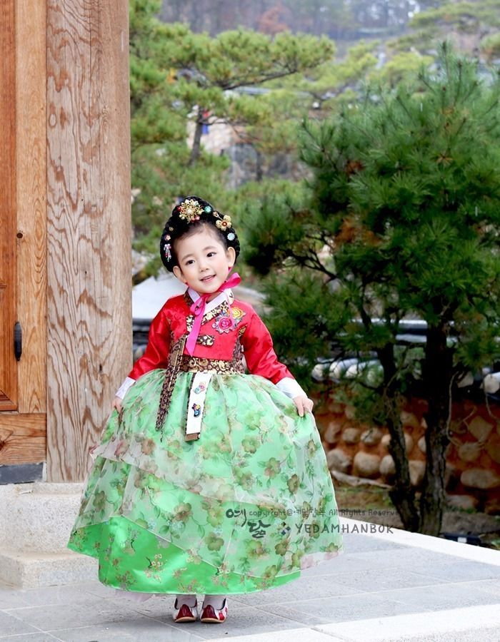 Hanbok Girl Korean traditional Dress Korea Baby 1st birthday Party Red Green…